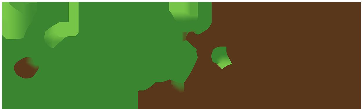 logo-web-semilla-innova